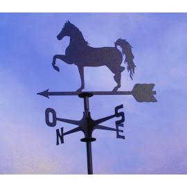 segnavento Cavallo Passo Spagnolo