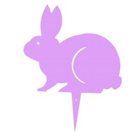 BUNNY coniglio colorato