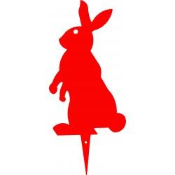 BUGS coniglio colorato