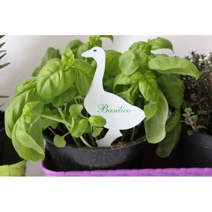 Targhetta per piante aromatiche: OCA